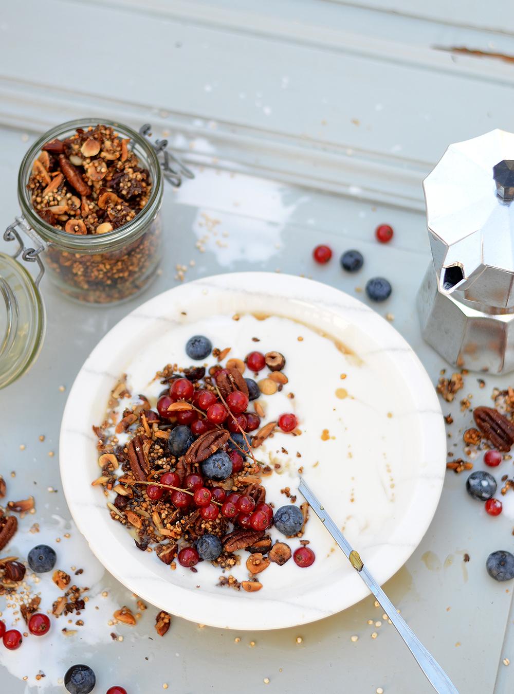 granola-mit-fruechten-vegan